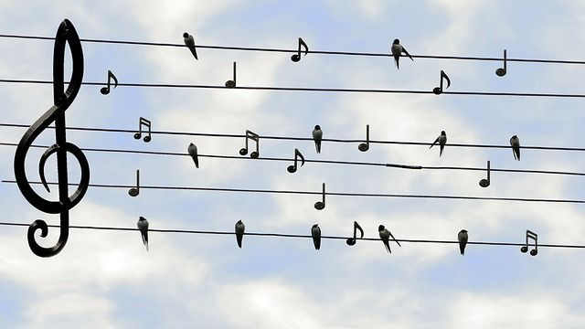 LumaSuite blog-How music can heal you